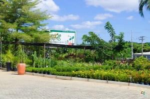 Cascalheira Garden é uma empresa do setor de Jardinagem e Paisagismo (2) - Cascalheira Garden - Jardinagem e Paisagismo Camaçari