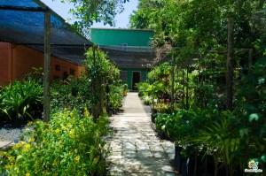 Cascalheira Garden é uma empresa do setor de Jardinagem e Paisagismo (6) - Cascalheira Garden - Jardinagem e Paisagismo Camaçari