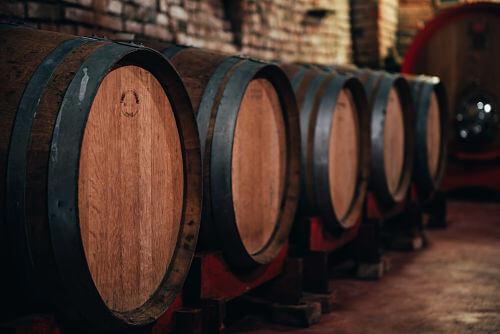 Degustazione vini cantina neive