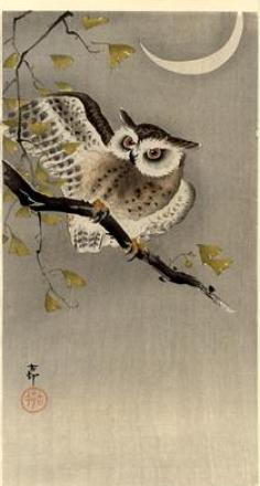 Owl on GInko Branch