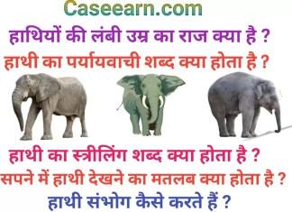 हाथी संभोग कैसे करते हैं ? हाथियों की लंबी उम्र का राज। हाथी का पर्यायवाची शब्द क्या होता है ?