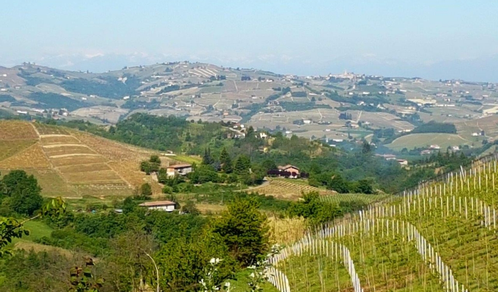 case-in-piemonte-piedmont-real-estate-rustico-with-project-001