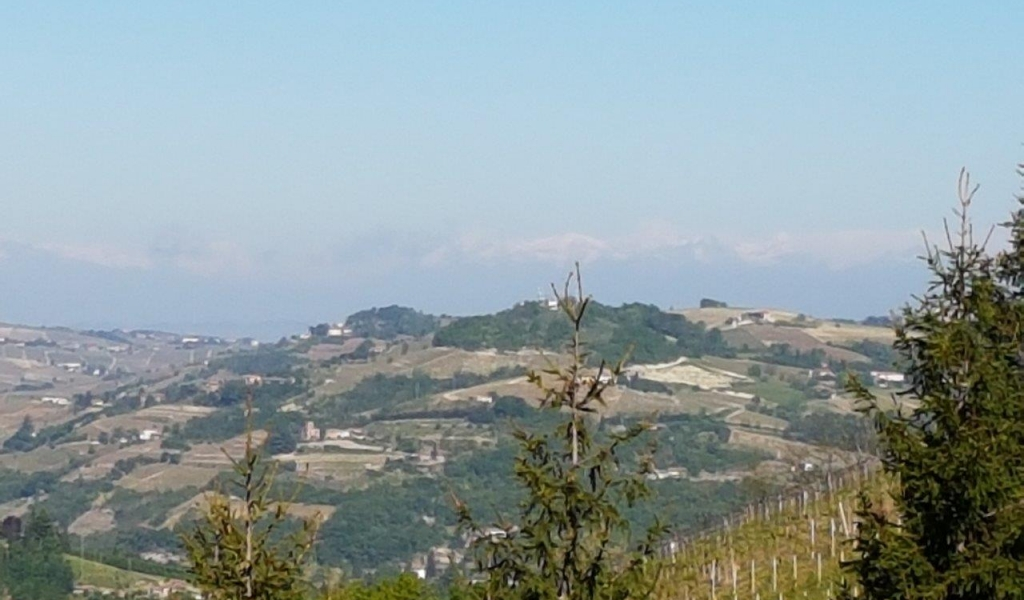 case-in-piemonte-piedmont-real-estate-rustico-with-project-005
