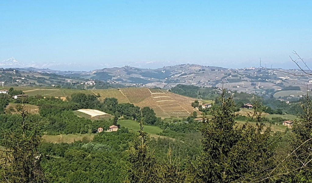 case-in-piemonte-piedmont-real-estate-rustico-with-project-006