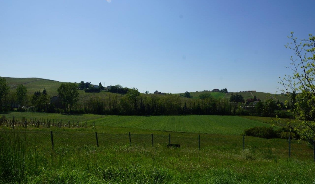 case-in-piemonte-piedmont-real-estate-property-surrounded-by-vineyards-002