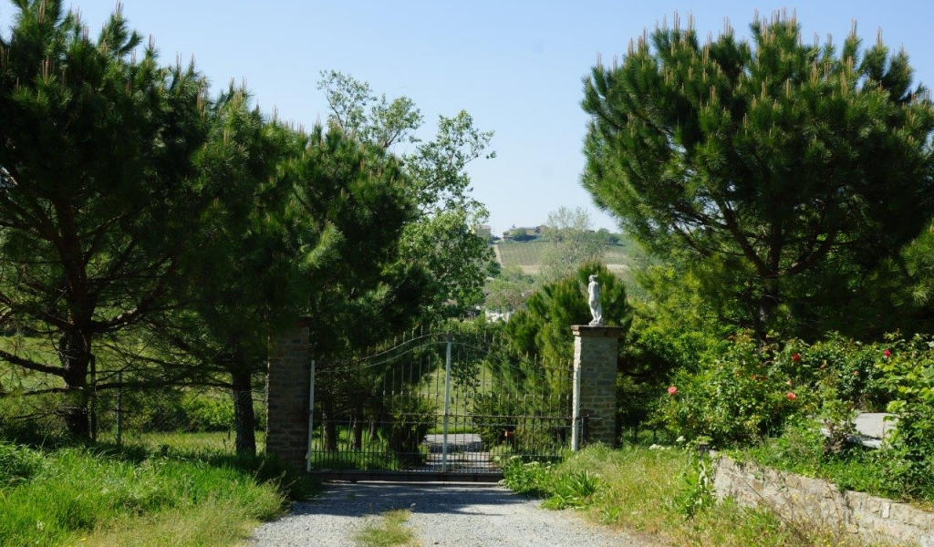 case-in-piemonte-piedmont-real-estate-property-surrounded-by-vineyards-003