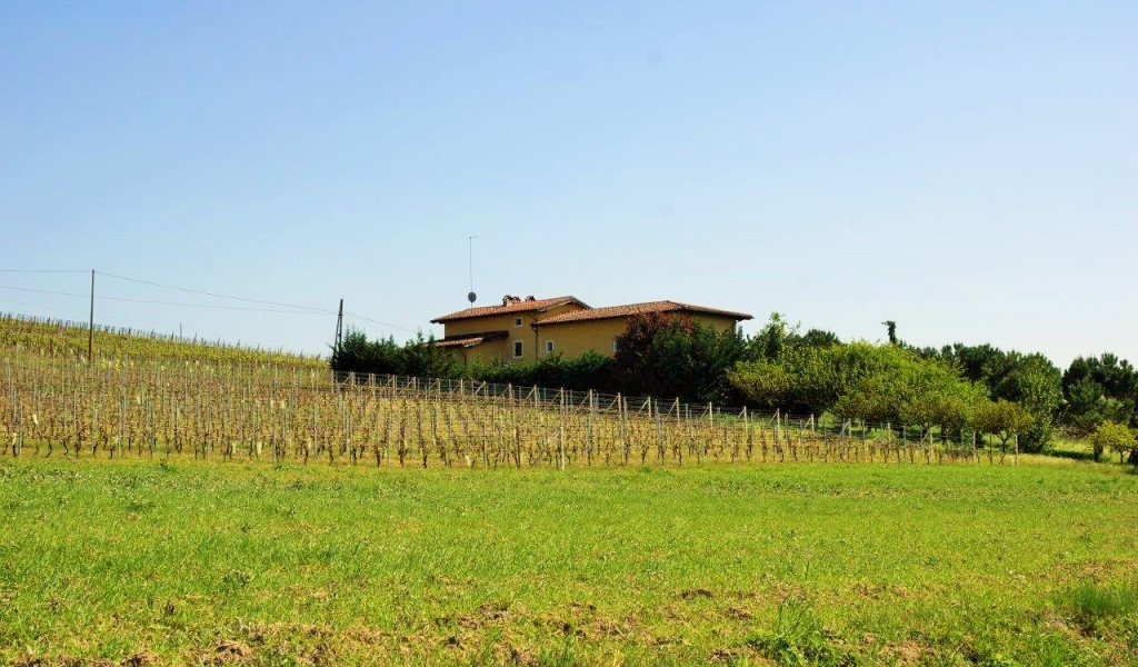 case-in-piemonte-piedmont-real-estate-property-surrounded-by-vineyards-019