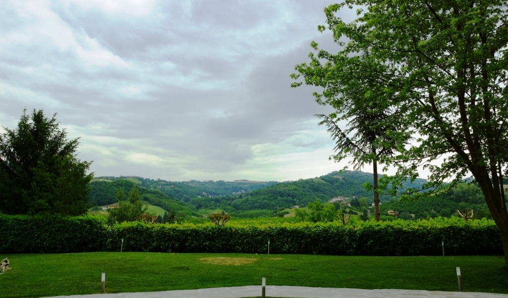 case-in-piemonte-piedmont-real-estate-amazing-cascinale-outside-canelli-16