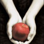 Twilight – Stephenie Meyer