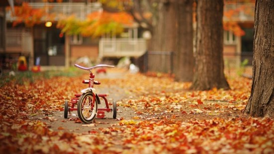 tricycle-automne-550x309