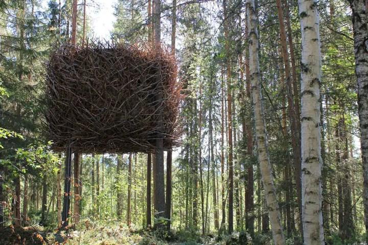 Casele din copaci pentru oameni mari