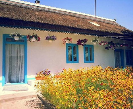 case traditionale din delta dunarii traditional Lippovan houses in the Danube Delta