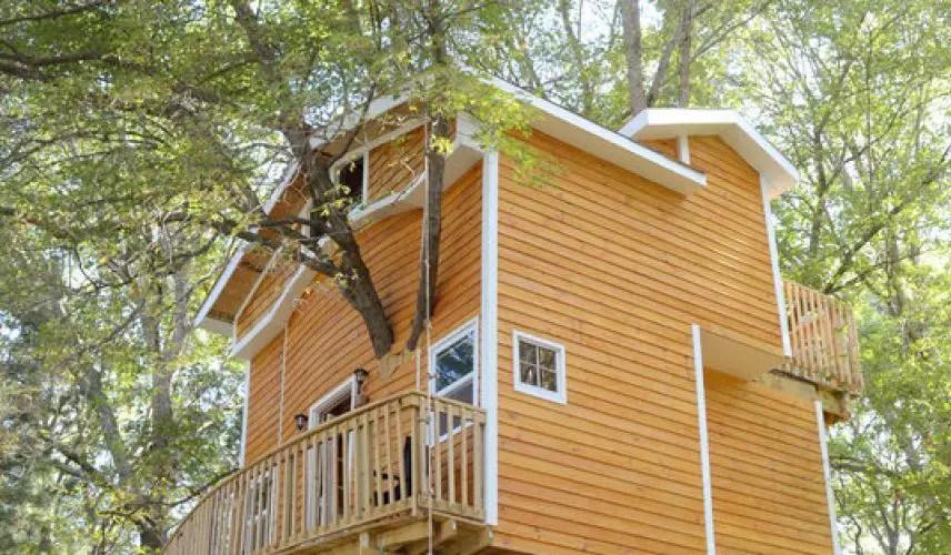 Casa din copac din America