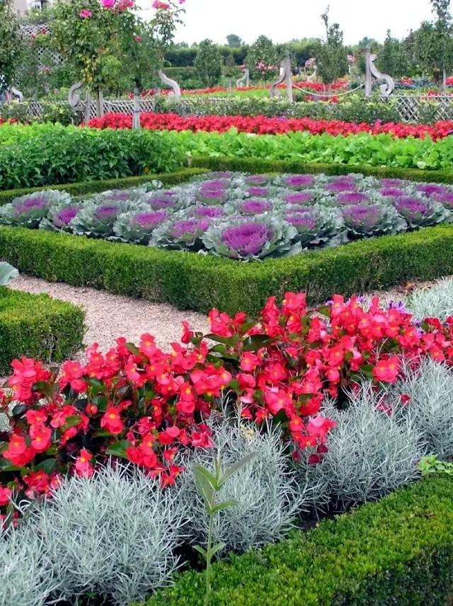 Decorative vegetable garden ideas  stylish green