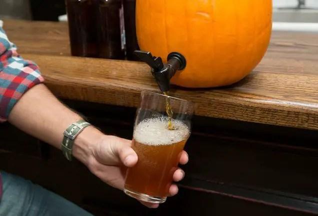 un butoias din dovleac making a pumpkin keg 7
