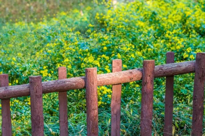 gardulete din lemn pentru gradina Garden fencing ideas 9