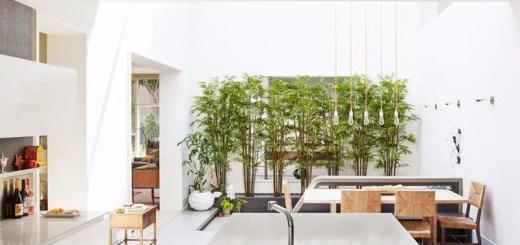 Casa cu luminator din Chicago