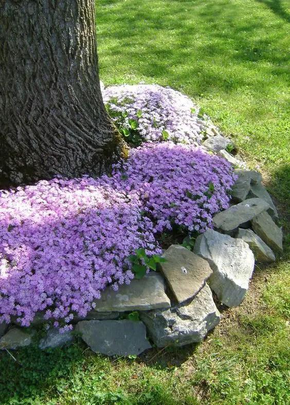 aranjamente de gradina cu pietre si flori Stone and flower garden design ideas 12