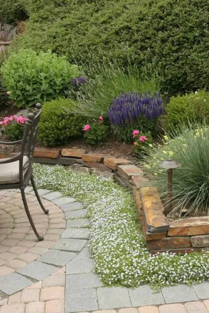 aranjamente de gradina cu pietre si flori Stone and flower garden design ideas 8