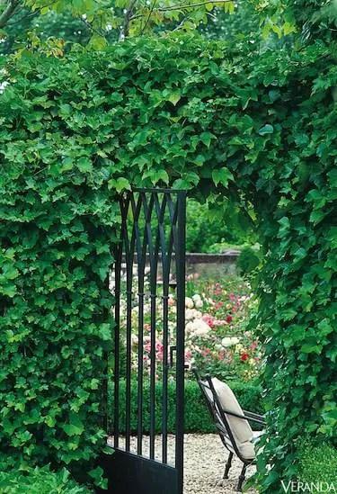gradini in stil francez frech style gardens 5