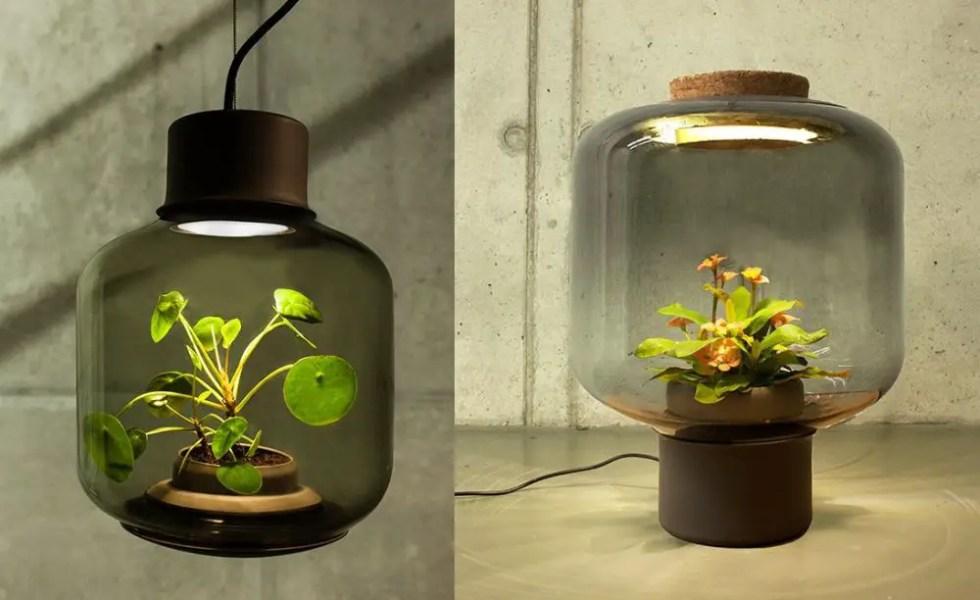 Lampile in care cresc plante la intuneric