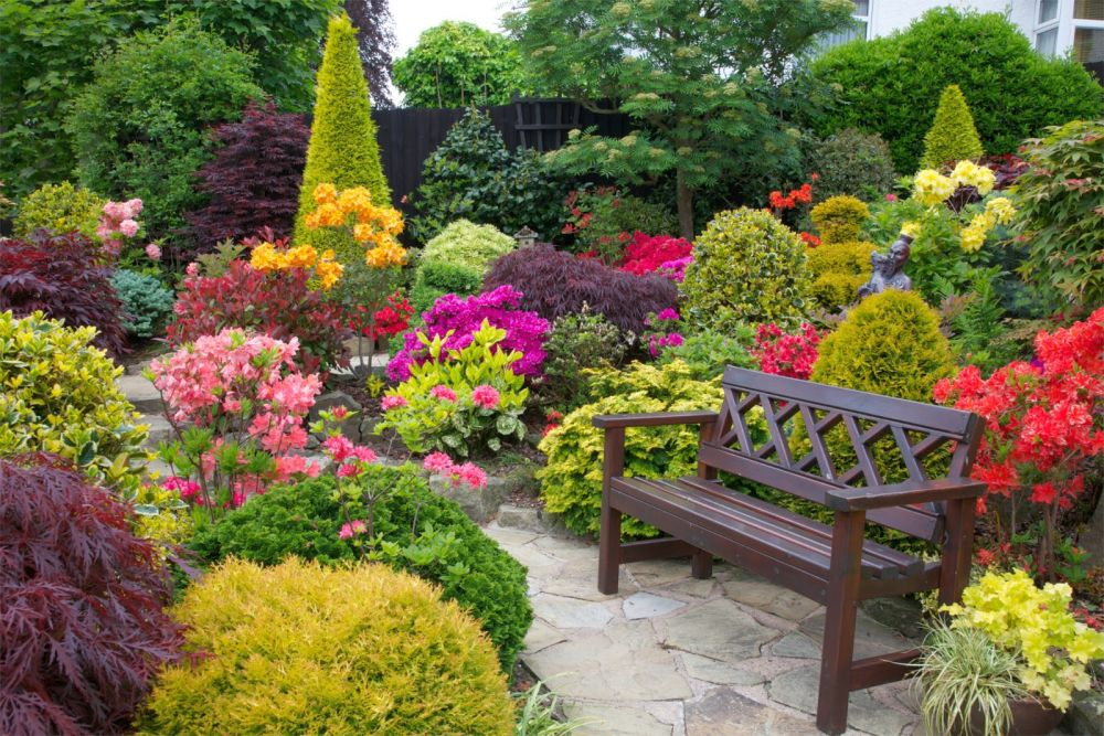 Modele de gradini mici, amenajate cu flori frumoase