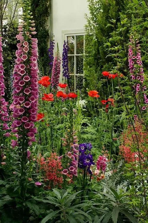 modele de gradini mici amenajate cu flori Small flower garden landscaping ideas 9