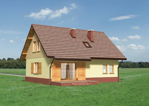 proiecte de case cu semineu House plans with fireplaces 7