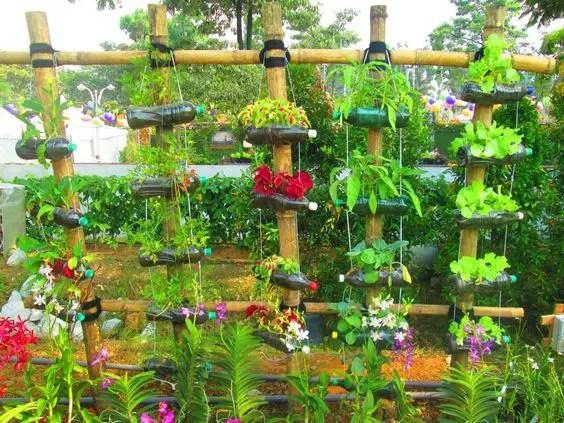gradini verticale din peturi Plastic bottle vertical garden ideas 12