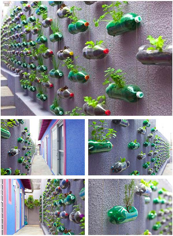 gradini verticale din peturi Plastic bottle vertical garden ideas 3