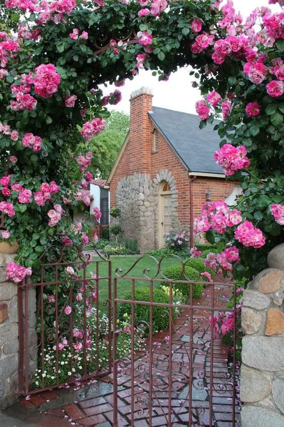 bolte pentru trandafiri cataratori Climbing rose trellis 8