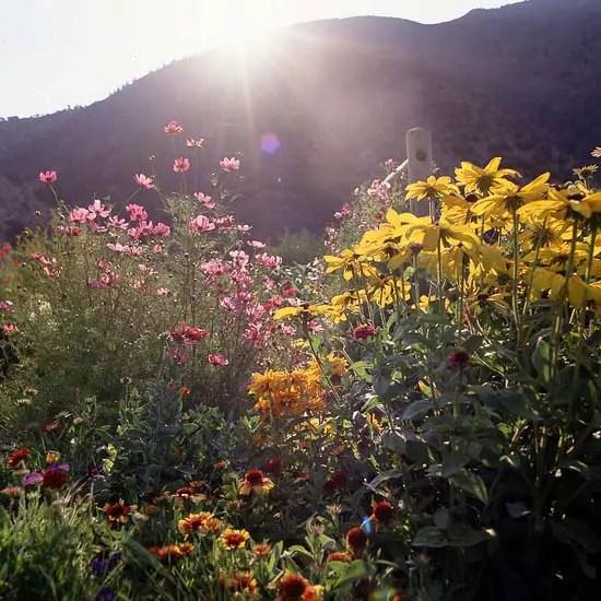 gradini amenajate ca la munte Mountain garden landscaping ideas 7