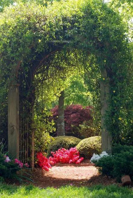 gradini cu arcade garden arches design ideas 13