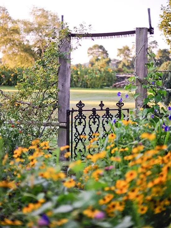 gradini rustice cu flori Rustic flower gardens 6