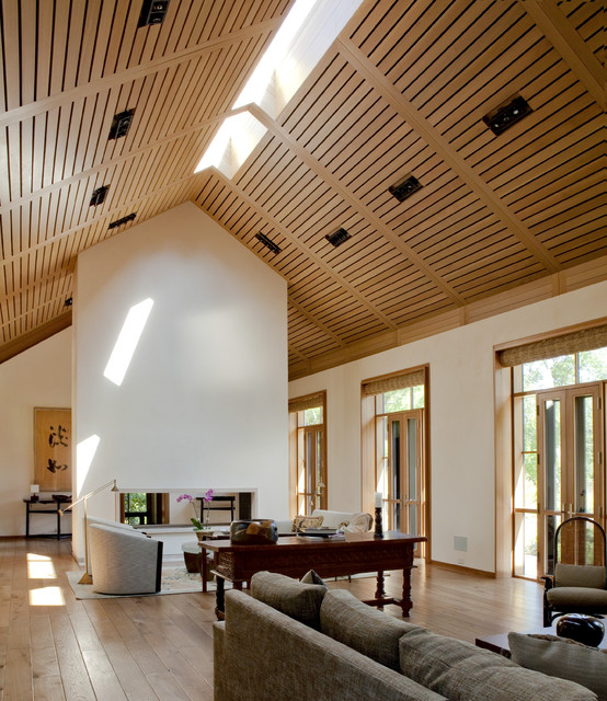 livinguri cu tavan din lemn wood ceiling living rooms 13