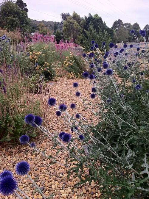 amenajarea gradinii cu pietris Pebble garden decoration ideas 18