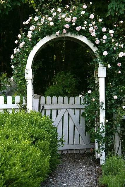 arcade de gradina din lemn garden wood arches 15