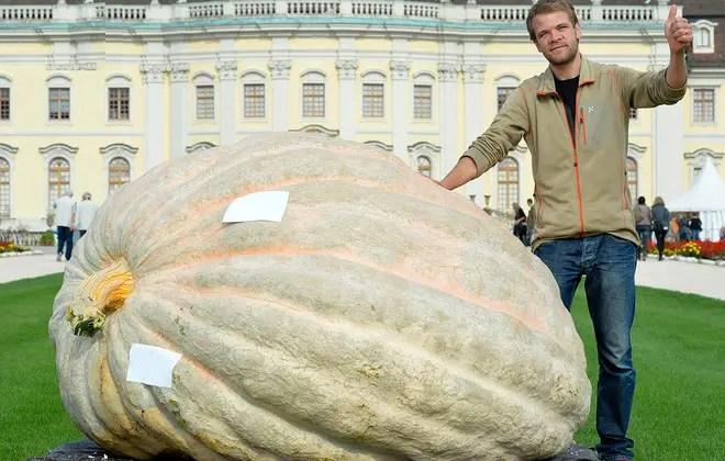 cele mai mari fructe si legume din lume dovleac