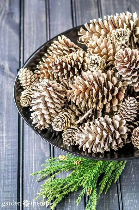 decoratiuni de iarna din conuri de brad inalbite