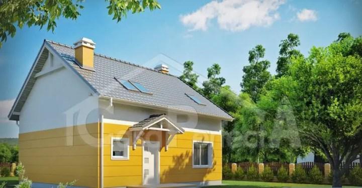 proiecte de case in doua culori 1 intrare