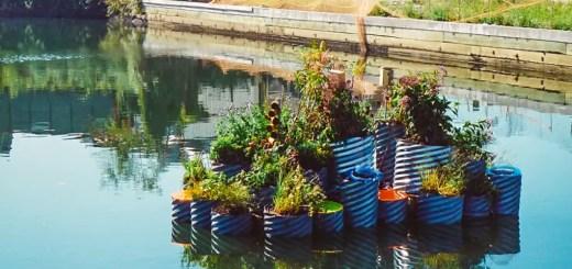 proiect inedit de decontaminare a apei