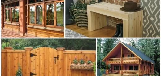tratarea lemnului la exterior