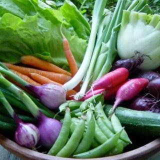 legume care se planteaza toamna