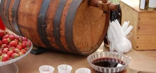 reguli pentru un vin de casa reusit
