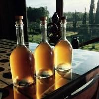 Domaine Almanegra presentó su nuevo Almanegra Orange... el último glamour de la familia Almanegra