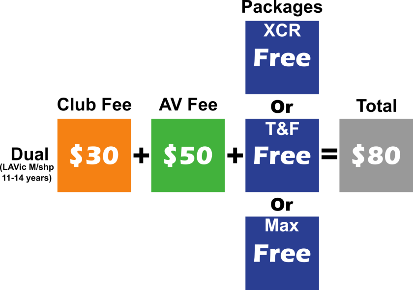 dual fees Graphics