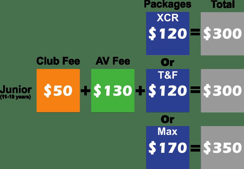 junior fees Graphics