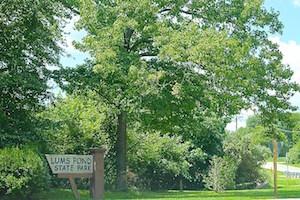 Bear Delaware Real Estate