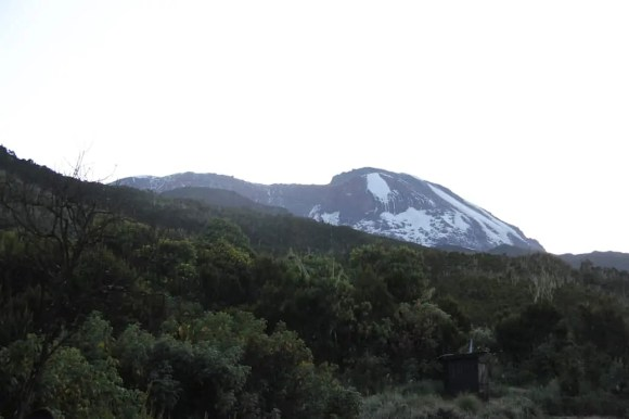 A view to the summit from Machame Camp