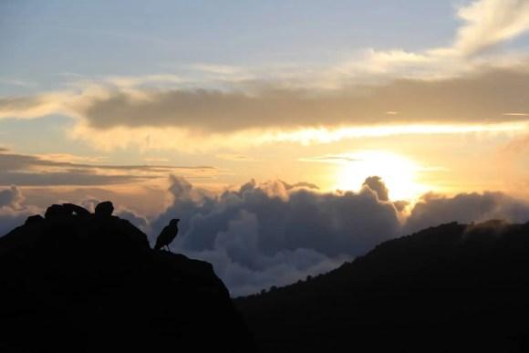 The Tanzania Chronicles — Day 4 — Sunset at Karanga Valley Camp